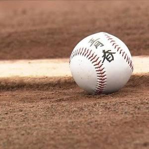 ワイワイ野球⚾️📣