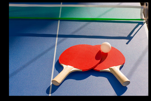 平日卓球部(メンバー数400名以上のたのしい卓球サークル)