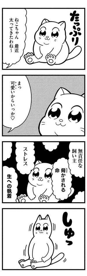 ねこ友幸せ学会(小倉支部