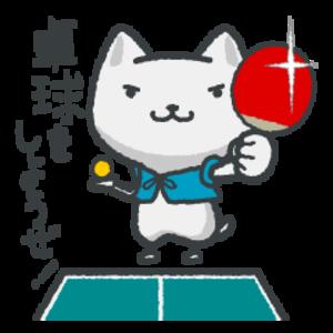 一緒に卓球しましょう(^o^)✨