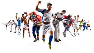 スポーツサークル