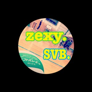zexy  ソフトバレーチーム