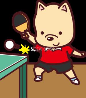 土日メイン卓球