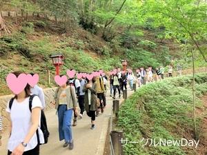 Hiking 53