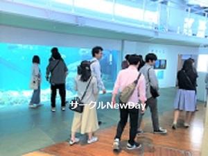 ★4/27 葛西水族館で楽しく友達作り★