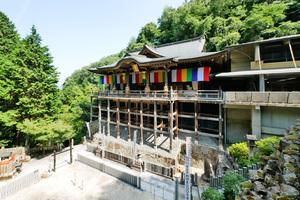 4/28 狸谷不動院巡り|京都寺社仏閣巡り