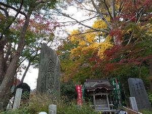 【特典付き】第1回、高尾山へ登ってみよう!