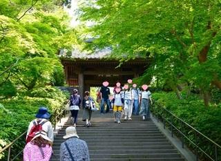 Hiking kamakura1