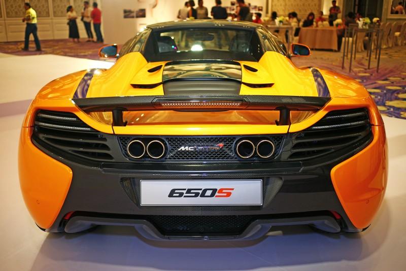 如拋光不銹鋼中央四出排氣管、碳纖維尾翼等,皆是專屬於650S Can-Am的嶄新限定設計。