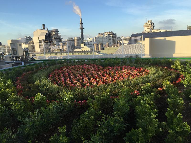為提倡環保綠美化、降低溫度,台灣普利司通充分活用大樓空間,於頂樓增設空中植栽花園(Sky Garden)。