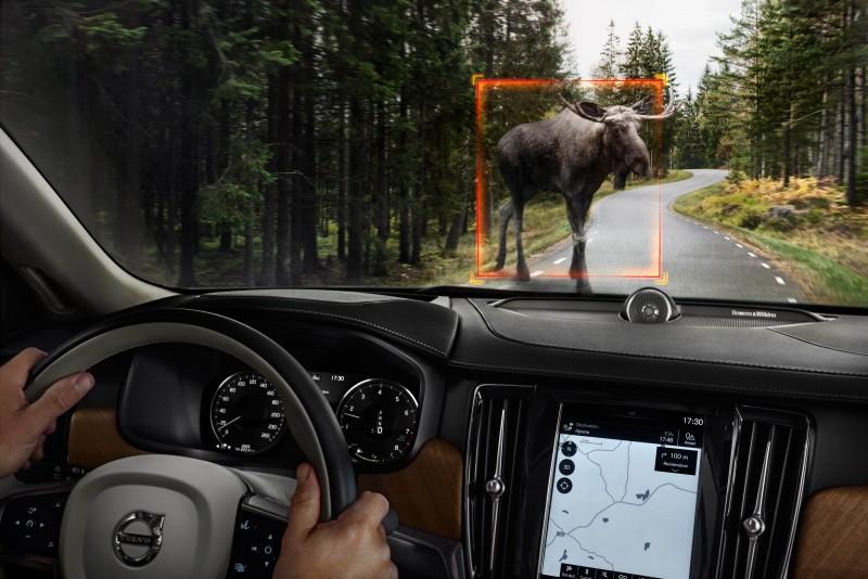 精進的City Safety都會安全防護系統亦整合大型動物偵測暨完全主動煞車功能,可在時速4公里以上開始作用,如前方路面出現麋鹿、馴鹿或馬匹等大型動物。