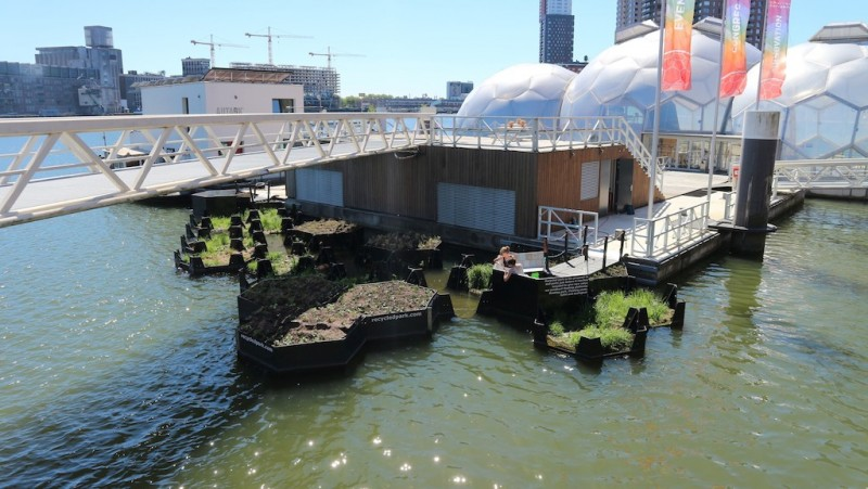 運用熱壓、焊接及3D列印技術建造六角形塑膠浮動島提升了周遭居民的生活環境並且也改善河中魚類和其他水生生物的棲息地。