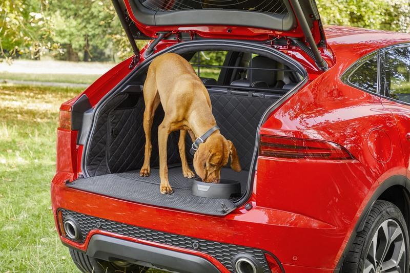 防溢水碗與行李廂墊讓旅途中狗可以有水喝同時也不會弄髒。