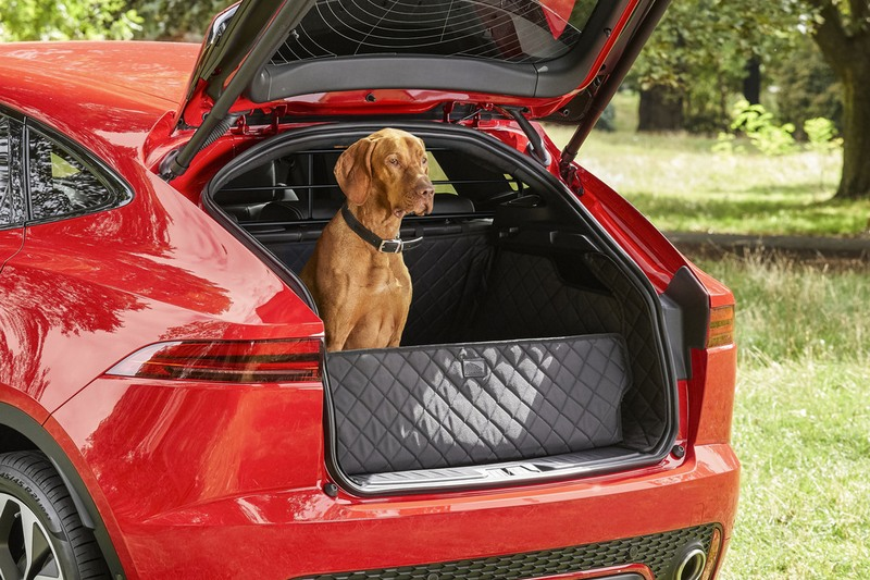 椅背保護墊能防止座椅被狗抓傷,同時也提供狗舒適的環境。