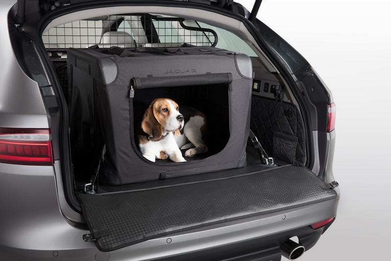專屬運輸籠讓寵物於旅途終能更安穩。