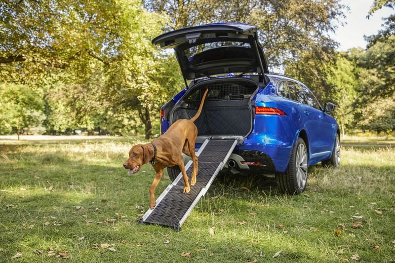 摺疊鋁質踏板讓老狗、小型犬或關節不好的狗更容易上下車。