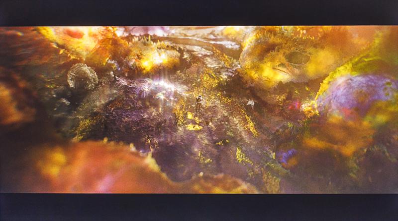 從這張翻攝自電影的畫面就可以看出,TH-55GX750W的豐富色彩表現,特別是金黃色以及紫色調的細節階調,其深淺轉折的變化,以及色彩還原度,都具備極高的水準,這也正是六原色顯像技術的特性。