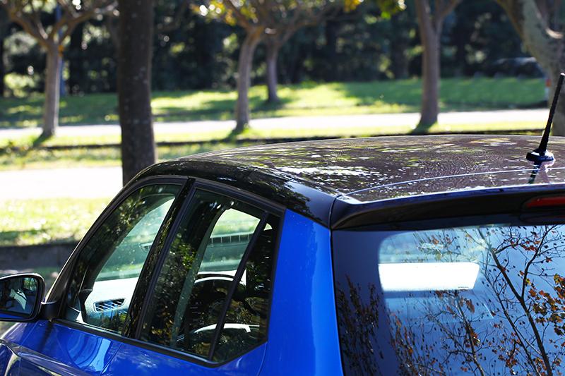 車頂也採用黑色處理。