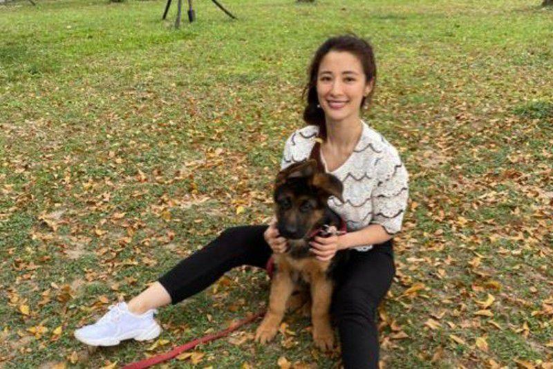 李蒨蓉為養犬子,險鬧家庭革命