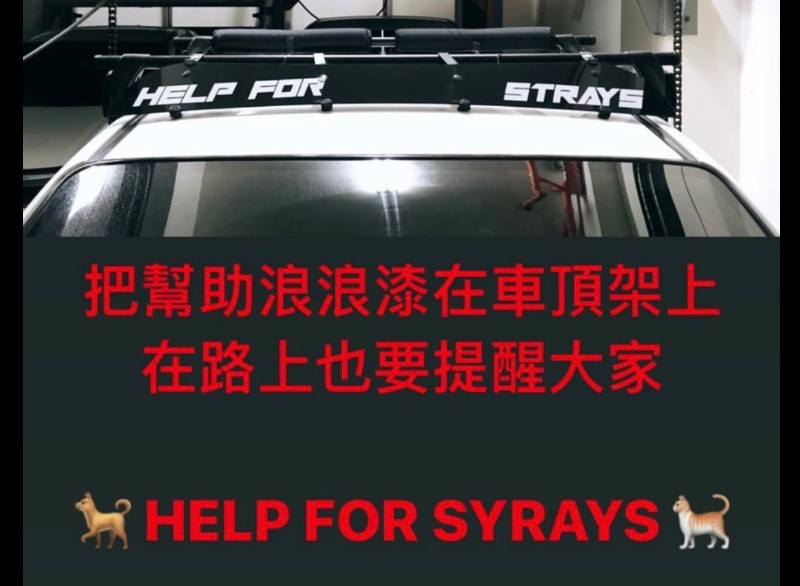 言明澔的車頂行李架上特地噴漆宣導關懷流浪動物。/言明澔提供