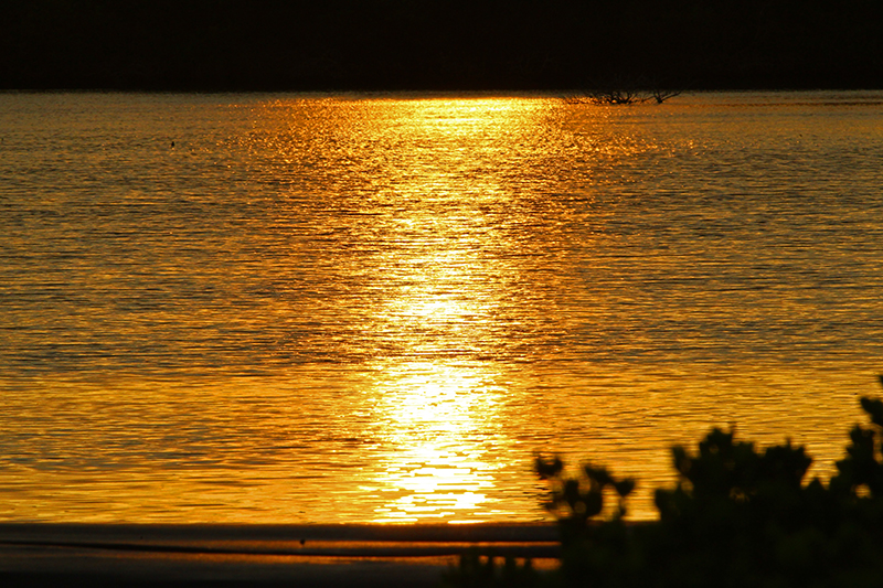 休閒單車漫遊配上日落風光,還有什麼比起這些更美麗?