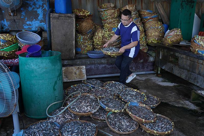 魚丁糸鼓手(八女)小威日前受邀參與錄製公視兒少節目《我家住海邊》,前往澎湖「鳥嶼」住上兩天一夜體驗當地傳統漁法「曬魚乾」。(圖:公視提供)