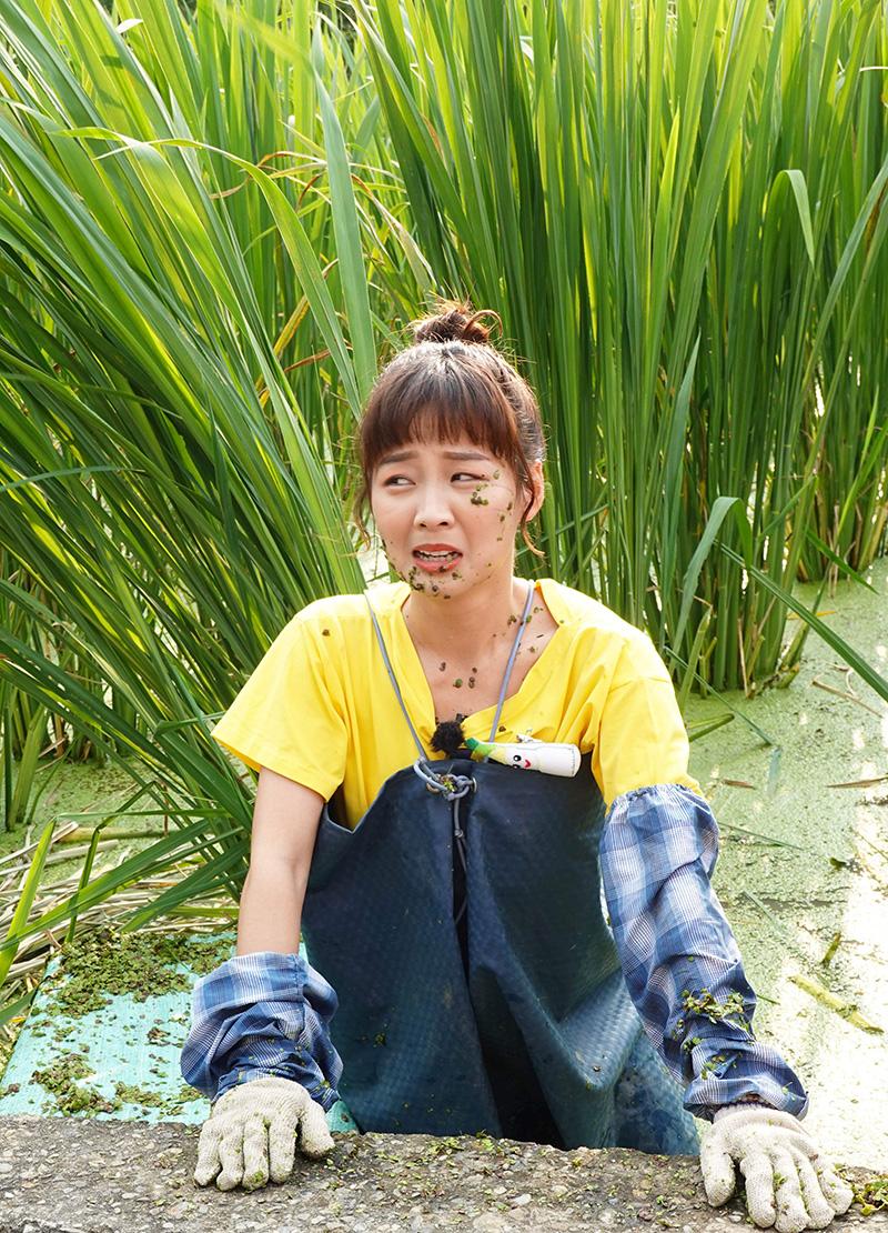 【車勢星聞】《綜藝新時代》籃籃在茭白筍田裡的浮萍敷臉。(圖:民視提供)