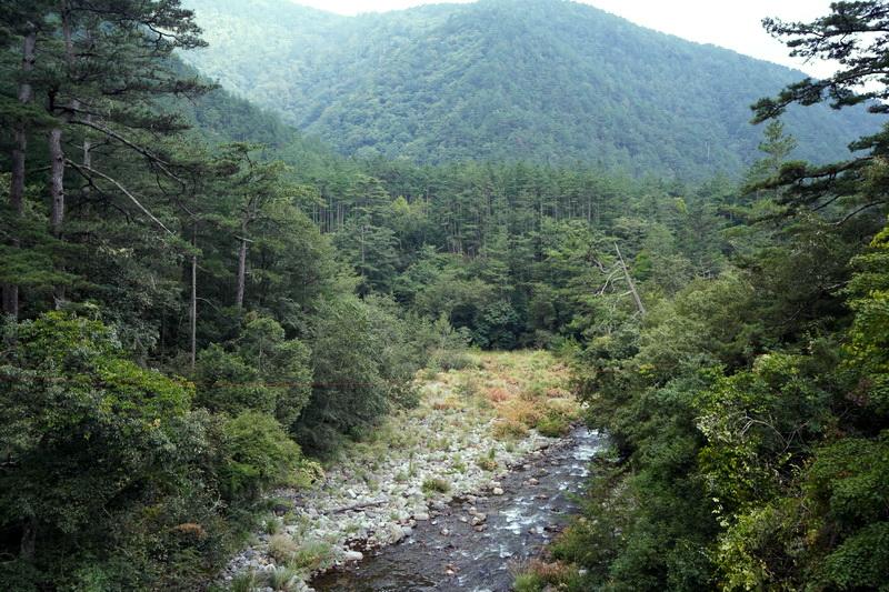 來到山中享受芬多精的洗禮是相當Chill的一件事