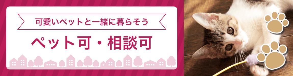 沖縄県のペット可賃貸物件特集