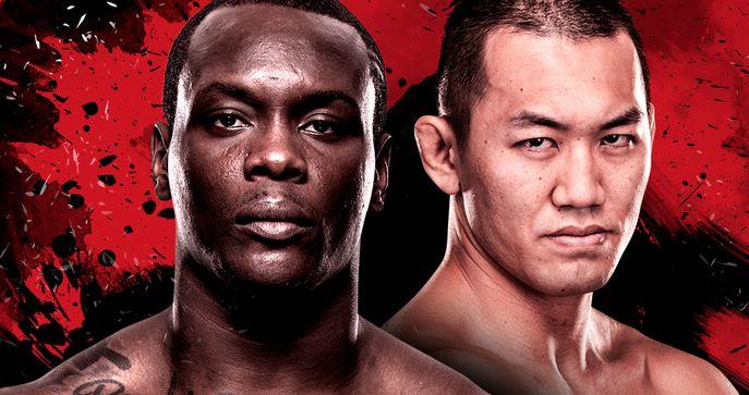 UFCファイトナイト・ジャパン:サン・プルー vs. 岡見