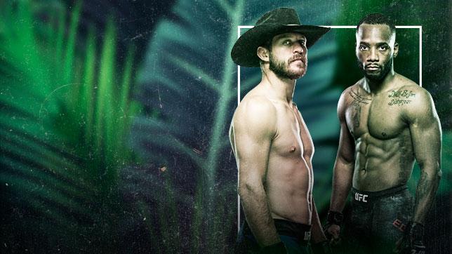 UFCファイトナイト:セラーニ vs. エドワーズ