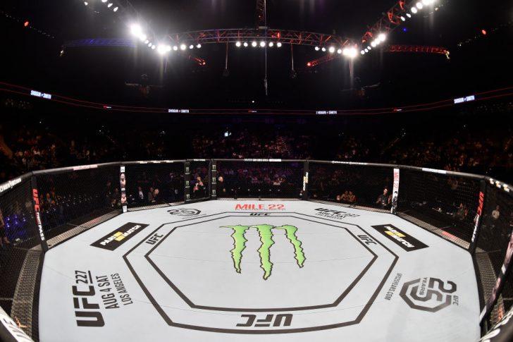 UFCファイトナイト・ハンブルク:オクタゴン【ドイツ・ハンブルク/2018年7月22日(Photo by Jeff Bottari/Zuffa LLC/Zuffa LLC via Getty Images)】