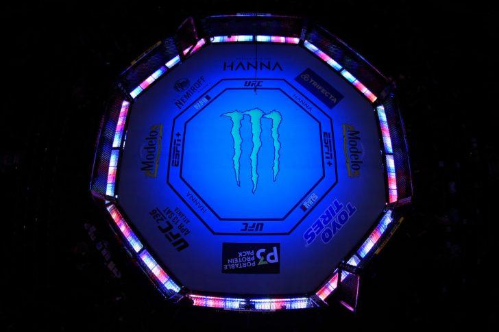 UFC 235:オクタゴン【アメリカ・ネバダ州ラスベガス/2019年3月2日(Photo by Jeff Bottari/Zuffa LLC/Zuffa LLC)】