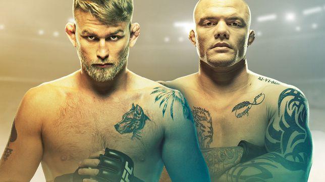 UFCファイトナイト・ストックホルム:グスタフソン vs. スミス