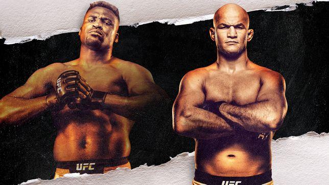 UFCファイトナイト・ミネアポリス:ガヌー vs. ドス・サントス