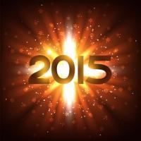 2015年の総合・恋愛・結婚・仕事のあなたの運勢を占うための人気まとめ