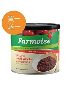 [清淨生活] 滿滿花青素~整顆天然蔓越莓乾 (250g/罐)
