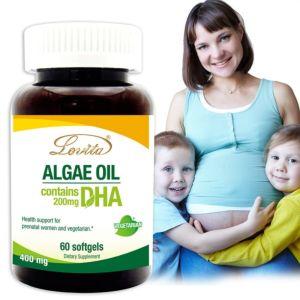 [Lovita 愛維他] 植物性DHA(藻油)200mg(60顆)-素食可