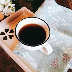 [好日X好食] 手工蔓越莓黑糖 (38g*8顆/盒) {賞味期限: 2018-12-24}