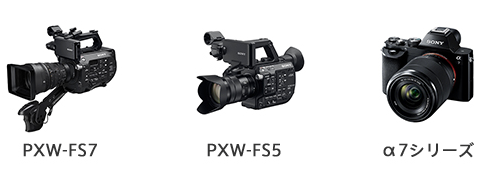 FS7FS5A7.png