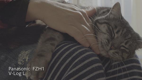 FZH1_VLOGLm.jpg