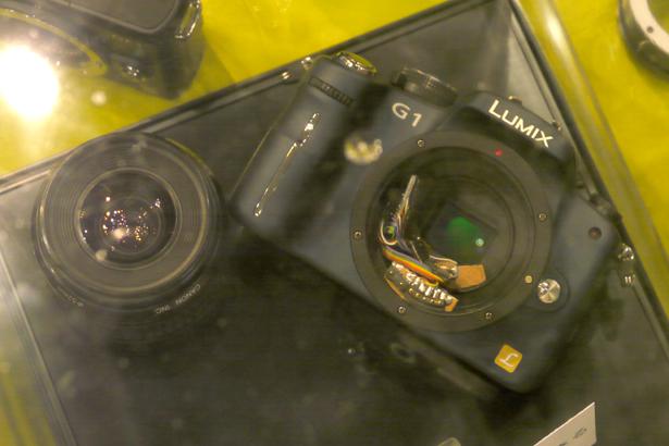 cp2012_kipon01.jpg