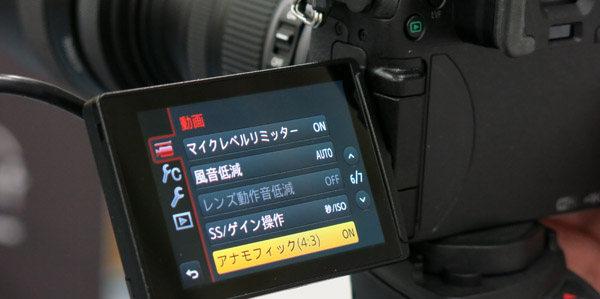 gh4_anamo2.jpg