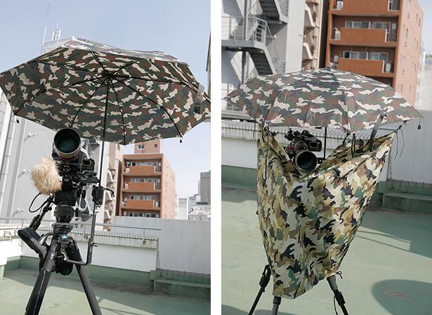 murasaki166-2.jpg