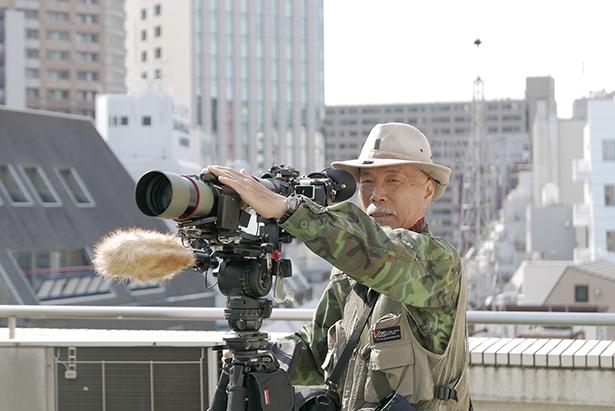 murasaki412.jpg