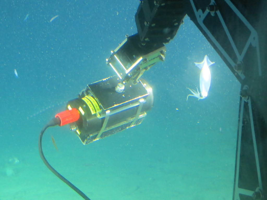 BBCとNHKの水中撮影で Blackmagic Micro Studio Camera 4K が活躍