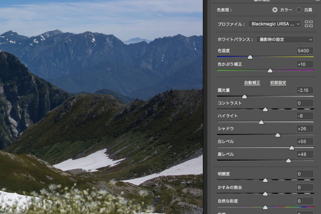 【READY for Blackmagic Pocket Cinema Camera 4K】URSA Mini Pro 4.6Kで撮影したRAWの1コマ、Cinema DNGファイルを提供します