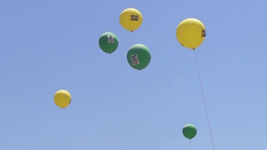 【Views】『親緑41 空つながり』4分35秒~地元の公園を中心に「親緑」という名のイメージ作品を作り続ける作者の最新作
