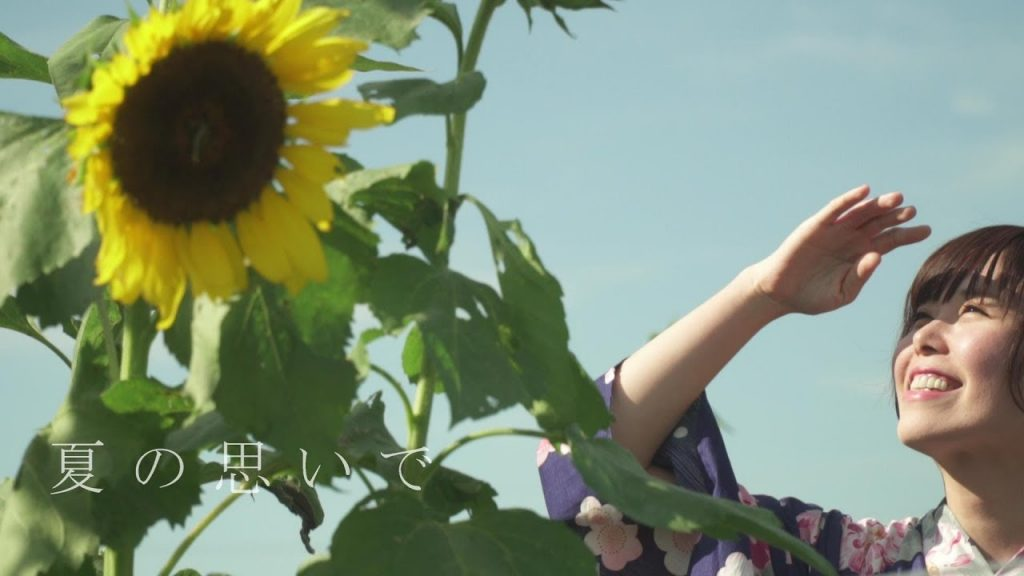 【Views】『夏の思い出』 2分41秒~楽しかったけどなんだか寂しい晩夏の想いを映像で綴る