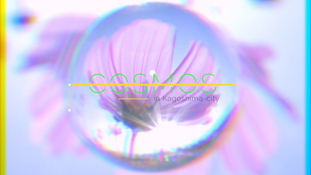 【Views】『秋桜-COSMOS- 』 2分53秒~視聴者に飽きさせない工夫がこれでもかとちりばめられたジェットコースタームービー